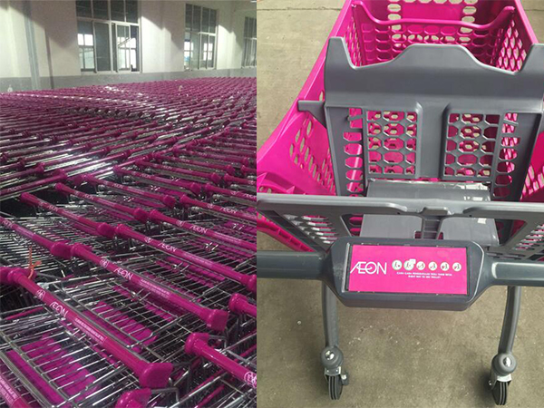 Aisa shopping carts