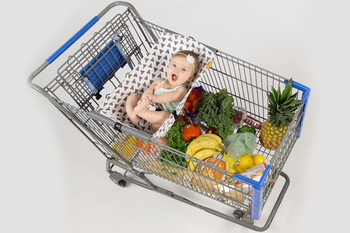 Why are Shopping Carts so Important?